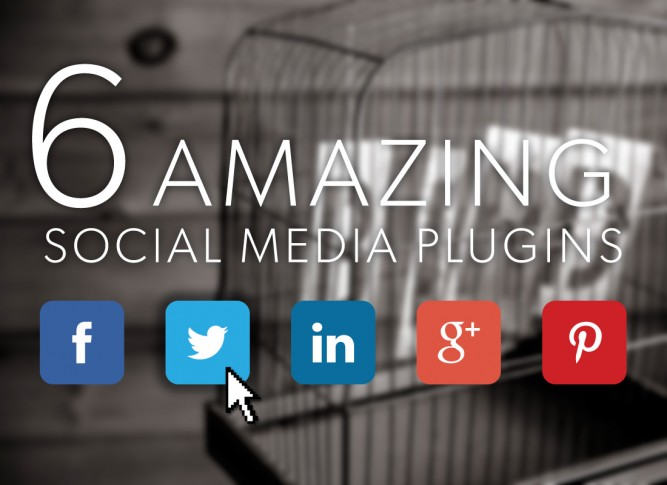 wordpress social media plugins image