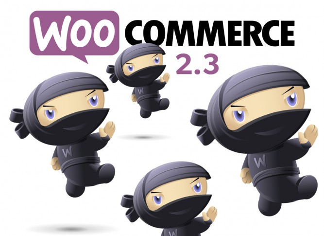 woo commerce 2.3