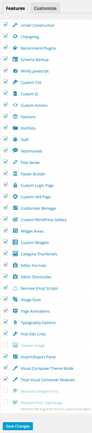 Total WordPress Theme Panel Customizer
