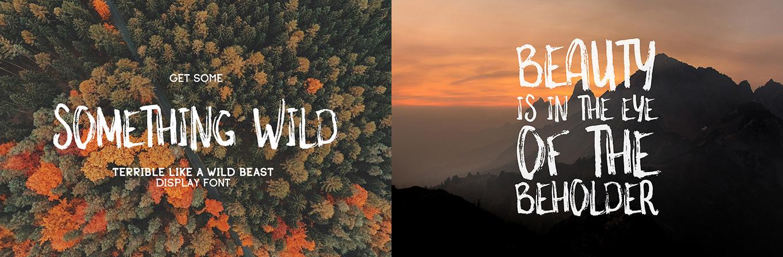 something-wild-font