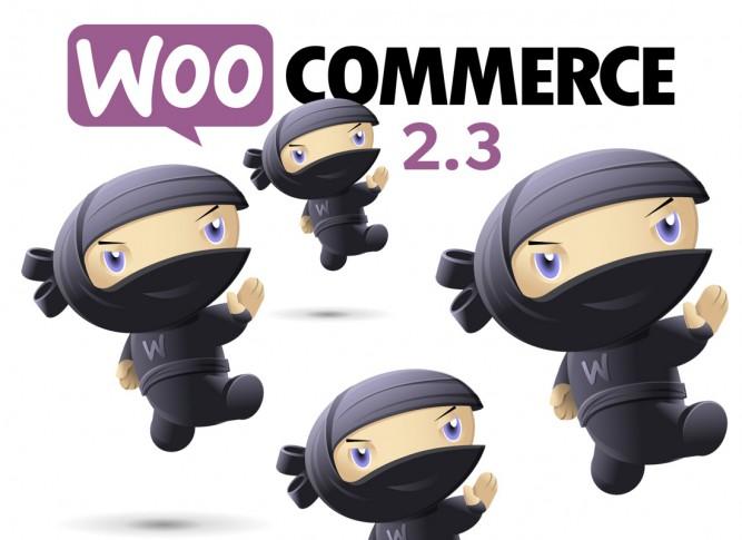 woo commerce 2.3