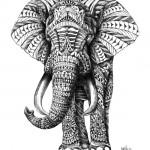 Ornate Elephant
