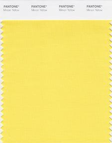 PANTONE-Color-Institute-Minion-Yellow-Swatch