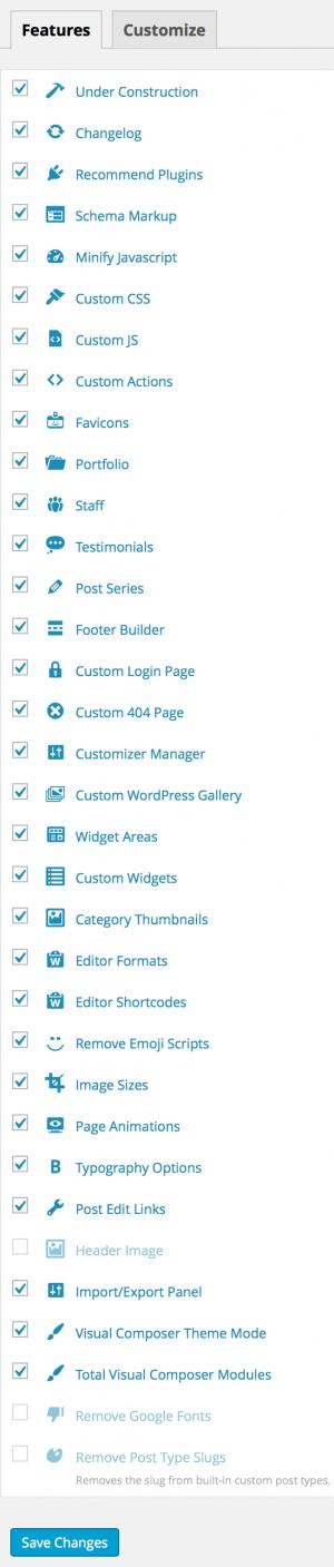 Total WordPress Theme Panel Customizer
